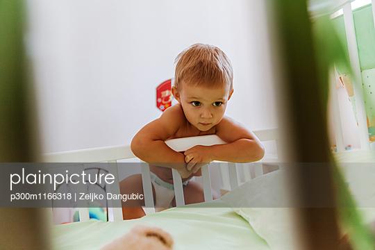 p300m1166318 von Zeljko Dangubic
