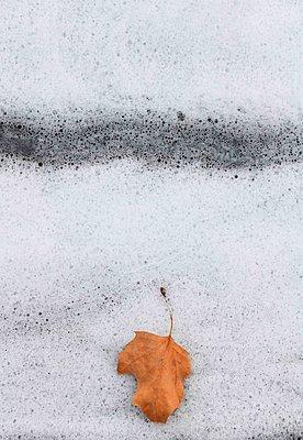 Autumn - p1229m2231110 by noa-mar