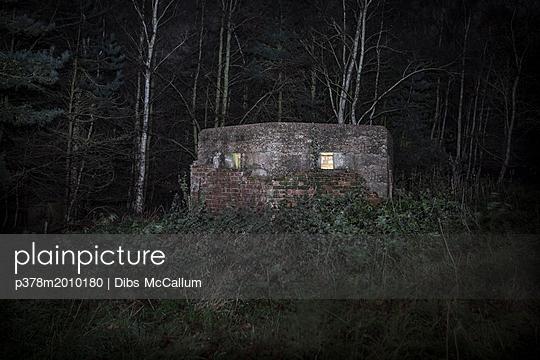 p378m2010180 von Dibs McCallum