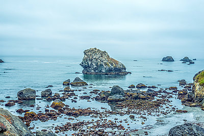 Rocky coast in Crescent City, California, USA. - p1436m2007886 by Joseph S. Giacalone