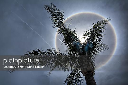 p924m2018794 von Chris Kridler