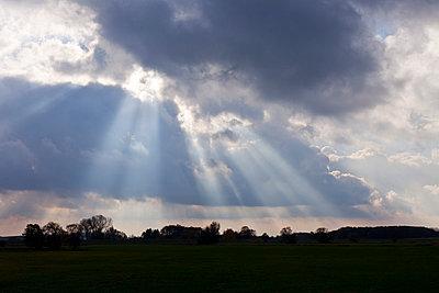 Sonne kommt durch - p570m793394 von Elke Röbken