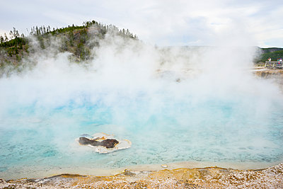 Excelsior Geyser with a large cloud of hot mist, Midway Geyser Basin - p1166m2147087 by Cavan Images