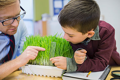 Teacher and elementary student examining sprouts in laboratory - p1192m1016793f by Hero Images