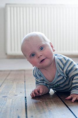 Krabbelndes Baby - p830m661276 von Schoo Flemming