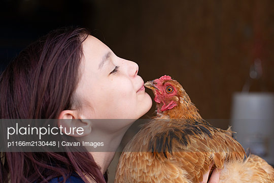Girl getting kissed by a chicken - p1166m2130448 by Cavan Images