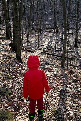 Child in red rainjacket in the forest - p919m1355457 by Beowulf Sheehan
