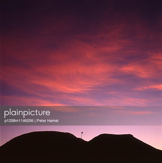 Sonnenaufgang mit Palme - p1258m1146206 von Peter Hamel