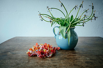 Dead flower petals next to stems in vase - p301m2070921 by Sven Hagolani