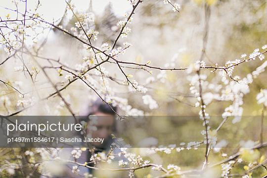 Junge Frau in weißen Blüten  - p1497m1584617 von Sascha Jacoby