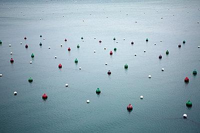 Buoys in Dinard - p1289m2055490 by Elisabeth Blanchet