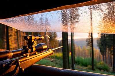 Germany, Bavaria, view from highstand of hunter with aiming gun - p300m2004628 von Michael Malorny