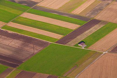 p300m977987f von Werner Dieterich