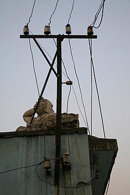strommast und chinesische skulptur - p6270222 von bobsairport