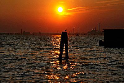 Lagoon of Venice - p726m2044481 by Katarzyna Zommer