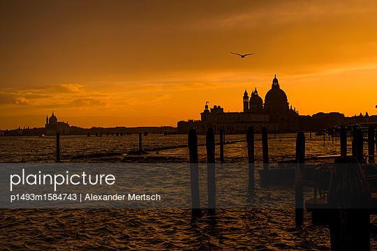 Sonnenuntergang über Salute-Kirche, Venedig - p1493m1584743 von Alexander Mertsch