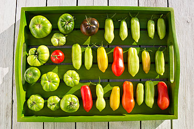 Wooden tray with various tomatoes, stage of ripeness, unripe and ripe - p300m2079018 by Dieter Heinemann