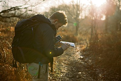 Male hiker reading map in sunlit woods - p429m1021925f by Dale Reubin