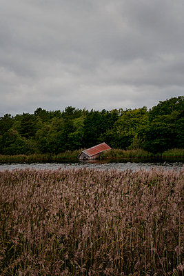 Old boathouse in Åland  - p470m2270104 by Ingrid Michel