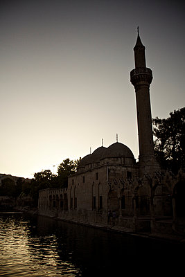 Karpfenteich an der Halil-Rahman-Moschee, Sanliurfa, Türkei - p586m971413 von Kniel Synnatzschke