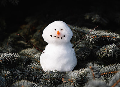 Close up of small snowman sitting on the branches of evergreen tree. - p1166m2095424 by Cavan Images