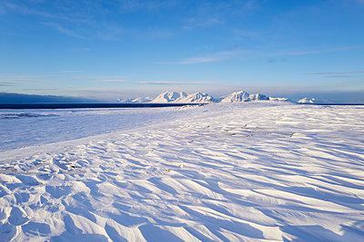 Spitzbergen Svalbard - p1203m1132410 von Bernd Schumacher