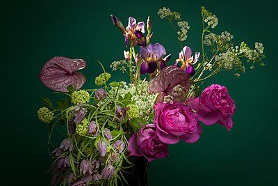 Brunch's flowers - p1371m1573794 by virginie perocheau