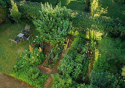 Garden - p972m1056403 by Gerry Johansson