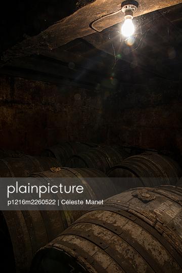 Barrels in winery cellar - p1216m2260522 by Céleste Manet