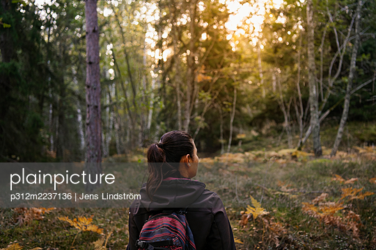 Rear view of woman in autumn forest - p312m2237136 by Jens Lindström