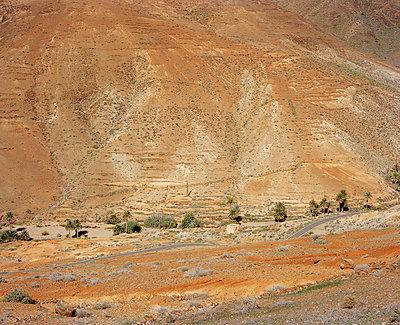 Landschaft auf Fuerteventura - p1097m866046 von Mélanie Bahuon