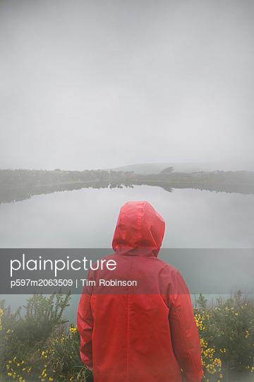 p597m2063509 von Tim Robinson