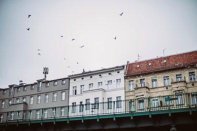 Berliner Häuserfront - p1326m1201292 von kemai