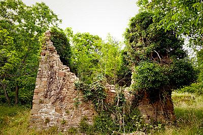 Ruine auf dem Land - p382m1158760 von Anna Matzen
