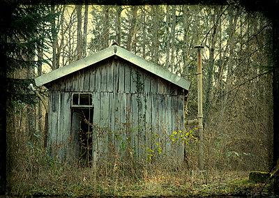 Forest cabin - p813m903905 by B.Jaubert