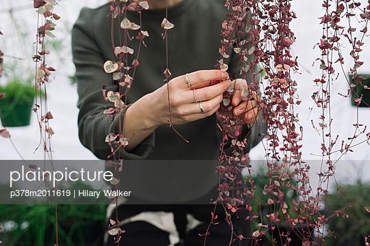 p378m2011619 von Hilary Walker