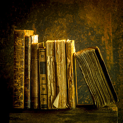 Antiquarian books - p813m1465508 by B.Jaubert