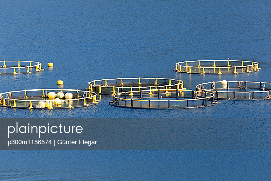 p300m1156574 von Günter Flegar