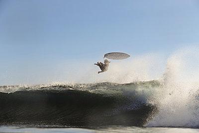 Surfer on a wave - p1166m2137497 by Cavan Images