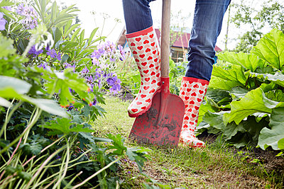 Gartenzeit - p464m1147219 von Elektrons 08