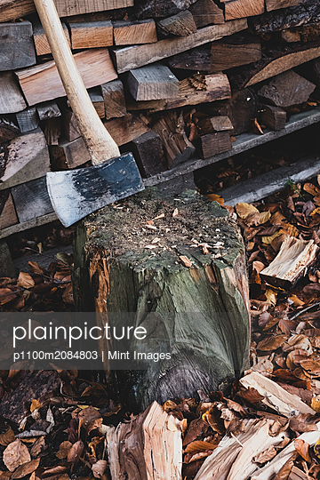 High angle close up of axe on chopping block, scattered wood cuttings and autumn leaves. - p1100m2084803 by Mint Images