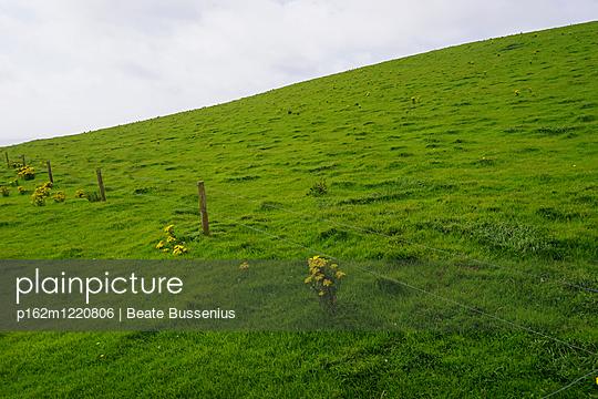 Weide in Irland mit Zaun - p162m1220806 von Beate Bussenius