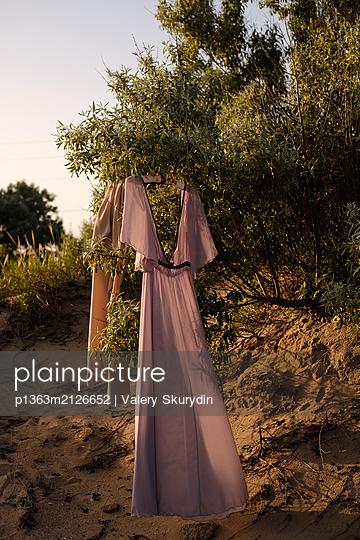 Purple dress on olive tree - p1363m2126652 by Valery Skurydin