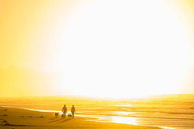 Two people walking dogs on a long sandy beach at sunrise. - p1100m1520433 by Mint Images