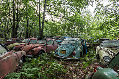 Abandoned cars - p1440m1497511 by terence abela