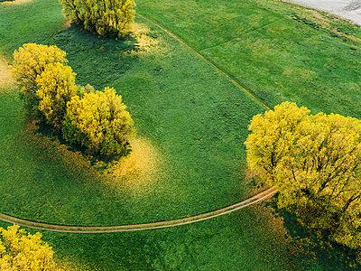 Wiesen und Bäume in herbstlichen Farben, Luftaufnahme - p586m1088274 von Kniel Synnatzschke