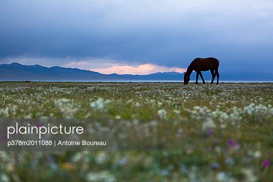 p378m2011088 von Antoine Boureau