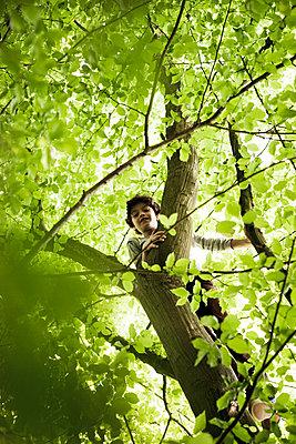 Junge beim Klettern im Baum - p1195m1138125 von Kathrin Brunnhofer