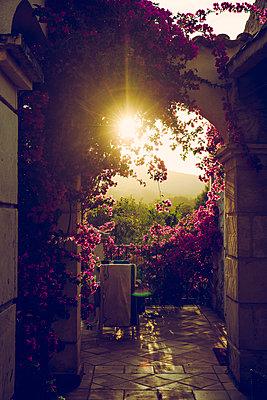 Abendsonne - p904m1044992 von Stefanie Päffgen