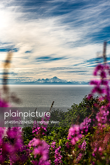 View through flowers onto sea and mountain range - p1455m2204526 by Ingmar Wein